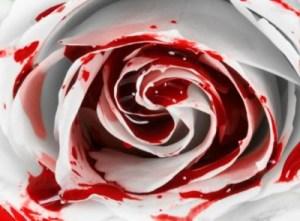 Blood_covered_Rose_by_Splattered__Blood